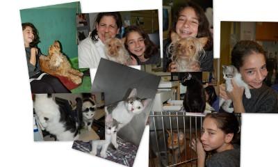 Visit to NY Humane Society